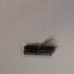 air duct cleaning company removes dirt, mold, mildew and more from air ducts